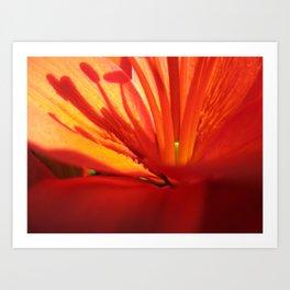 Red Stamen 86 Art Print