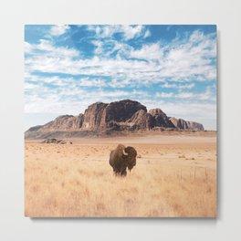The Lonely Bison, Salt Lake City, Utah-Desert Landscape Metal Print