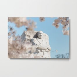 Cherry Blossoms in D.C. Metal Print
