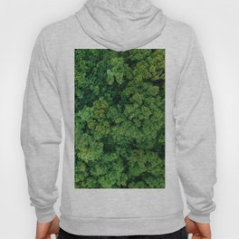 Greenery Forest (Color) Hoody