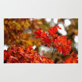 VIBRANT RED FALL LEAVES Rug