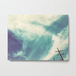 295 | west texas Metal Print