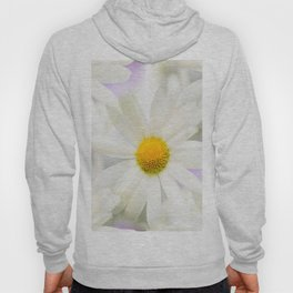 Daisy Flower Bouquet Pastel Color Background #decor #society6 #buyart Hoody