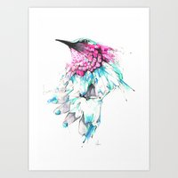 hummingbird Art Prints featuring Hummingbird by Alexis Marcou
