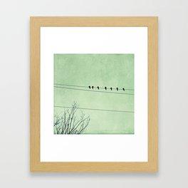 Birds on a Wire, no. 7 Framed Art Print