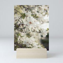 Magnolia Dreams Mini Art Print