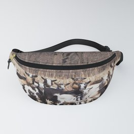 The Kidds Fanny Pack
