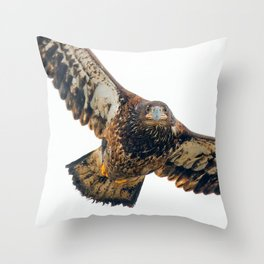 Young Bald Eagle in Breathtaking Flyby Throw Pillow