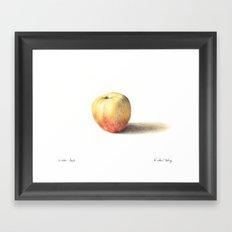 Winter Apple Framed Art Print