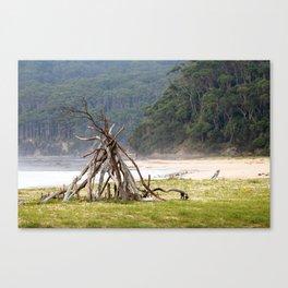 The Farthest Shore Canvas Print