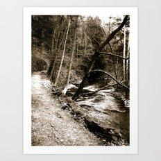Follow Your Path Art Print