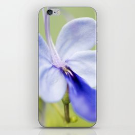 Blue Glory Bower iPhone Skin
