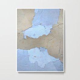 019 Metal Print