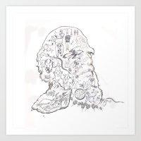 darwin Art Prints featuring darwin by Bern