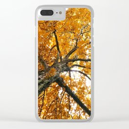 Out on a limb here Clear iPhone Case