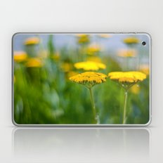 Yarrow III Laptop & iPad Skin
