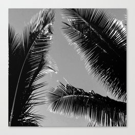 Vintage Hawaiian Palm Leaves at Twilight Canvas Print