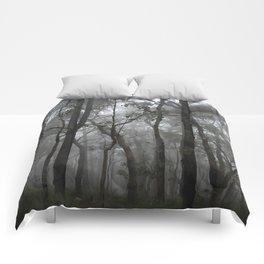 Misty Trees Comforters