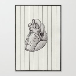 Anatomy of the Heart Canvas Print