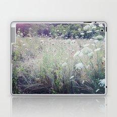 St. James Park Laptop & iPad Skin