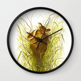 Nuttall's lesser-marsh Wren Wall Clock