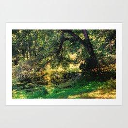 On Allerton Pond Art Print