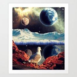 The Pondering Seagull Art Print