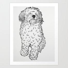 Biggles Art Print