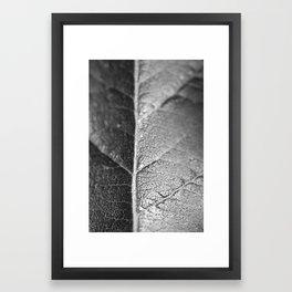 Macro flower 3 Framed Art Print
