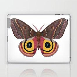 io moth (Automeris io) female specimen 2 Laptop & iPad Skin