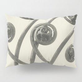 Vintage Fern Fiddleheads Pillow Sham