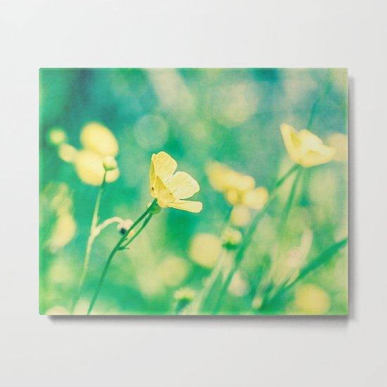 buttercups Metal Print