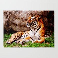 Malayan Tiger 4 Canvas Print
