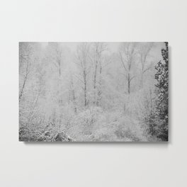 Crystallized Water Metal Print