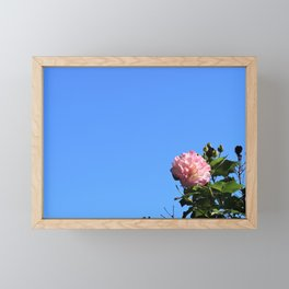 Flower in the Sky Framed Mini Art Print