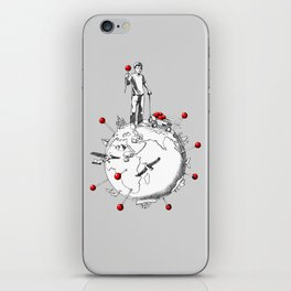World Traveler iPhone Skin