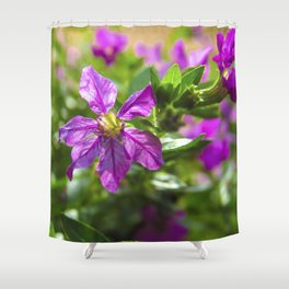 Violet Flowers Shower Curtain