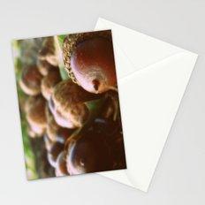 Acorns 2 Stationery Cards