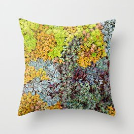 Wall of Succulents Throw Pillow