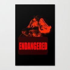 Endangered Tasmanian devil Canvas Print