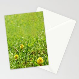 Three (and one) Range Stationery Cards
