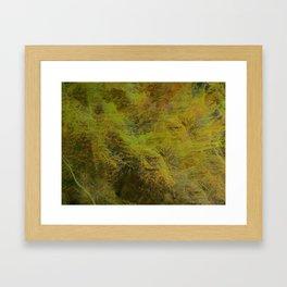 Moss ~ Abstract Framed Art Print