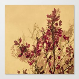 autumn symphonies VI Canvas Print