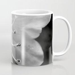 Beautiful Azalea Bloom in Black and White Coffee Mug