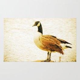 Canadian Goose Rug