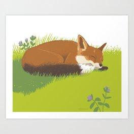 Snoozy Red Fox Art Print