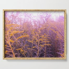 Pink Goldenrod Serving Tray