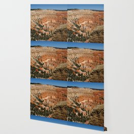 Amazing Bryce Canyon View Wallpaper