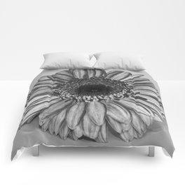 Floral amphitheatre Comforters