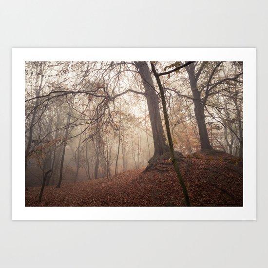 Autumn Fantasy : Mist and Mistery Art Print